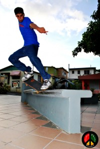 Fernando Martinez - backside Nosegrind